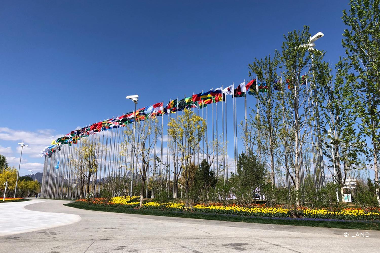 Beijing_5.jpg