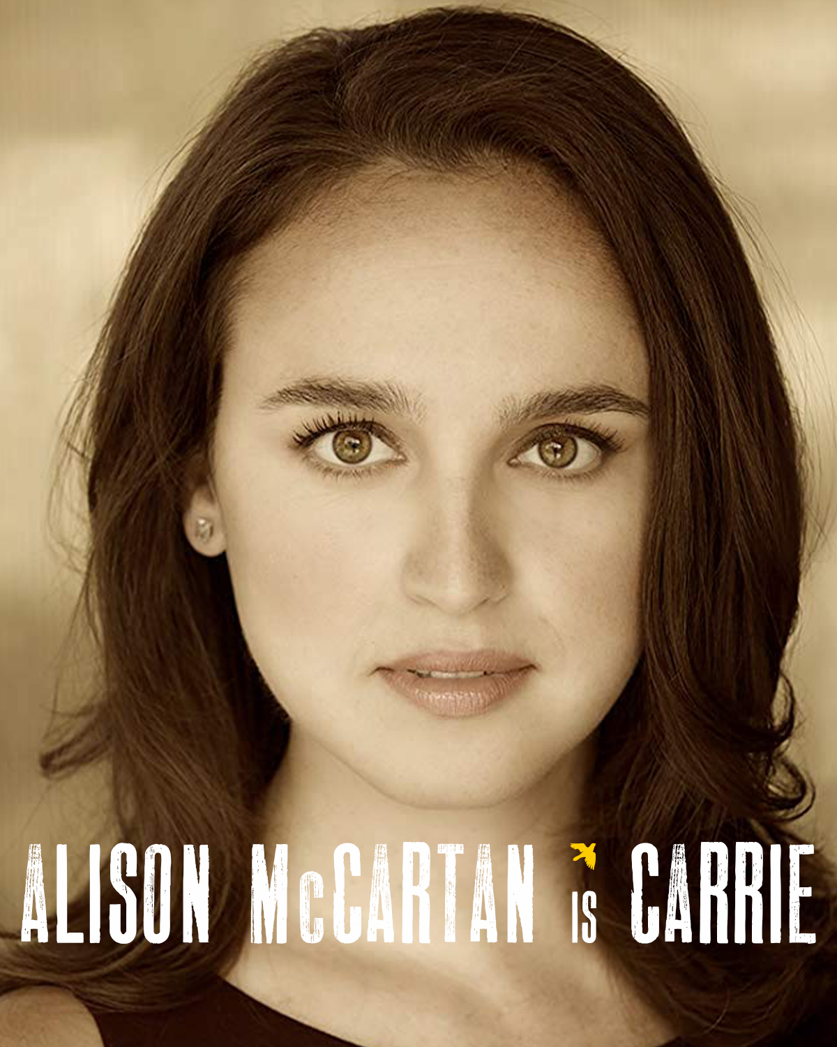 ALISON McCARTAN  (Carrie Bishop,  Storming Heaven ) is delighted to make her WVPT debut! National Tour:  Shrek the Musical . Off-Broadway:  Promises, Promises  - in Concert (Transport Group);  Calamity   Jane  (Theatre Row.) Regional:  Violet  (IRNE award),  Bad   Jews  (SpeakEasy Stage);  The   Drowsy   Chaperone ,  Dames at Sea ,  Steel   Magnolias ,  42nd   Street  (The Wick);  A Chorus Line  (Weston);  Next to Normal  (Hangar.) TV:  Law & Order: SVU . Alison would like to thank everyone on the  Storming Heaven  team, Henderson Hogan, Nancy Kremer, and her incredible family and loved ones for their constant support. Thoughts Become Things!  @alisoncatherine