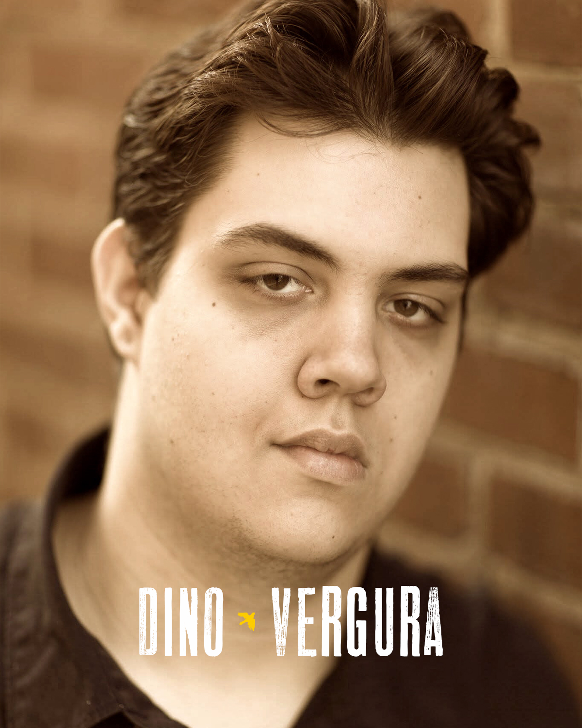 DINO VERGURA  (Ensemble) is very excited to be working on his first staged production with West Virginia Public Theatre, after being a part of the staged reading of  Storming Heaven: The Musical  in January. He is currently a senior Theatre Education Major at Fairmont State University, where he has performed as Lurch in  The Addams Family Musical , Jack Stone in  Reefer Madness , Shamreav in Anton Chekhov's  The Seagull , and Officer Lockstock in  Urinetown , which was selected to perform at the Kennedy Center American College Theatre Festival (KCACTF) Region 2 in January 2018. Enjoy the show!