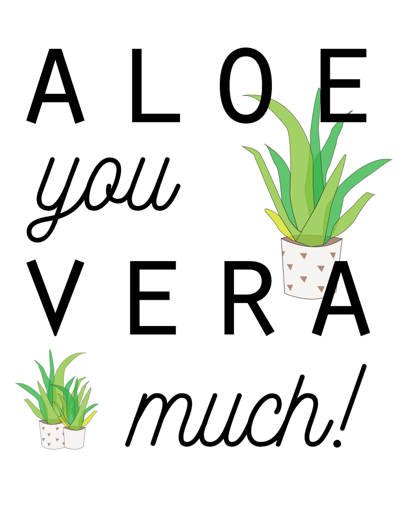 Sundling Studio - Aloe-You-Very-Much.png