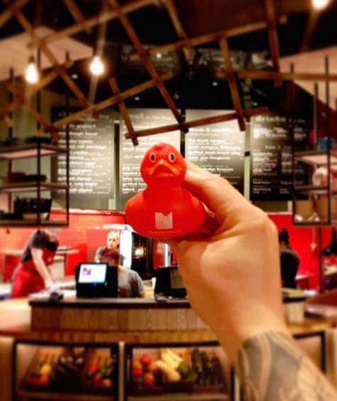 Red Ducky! @dandoherty_