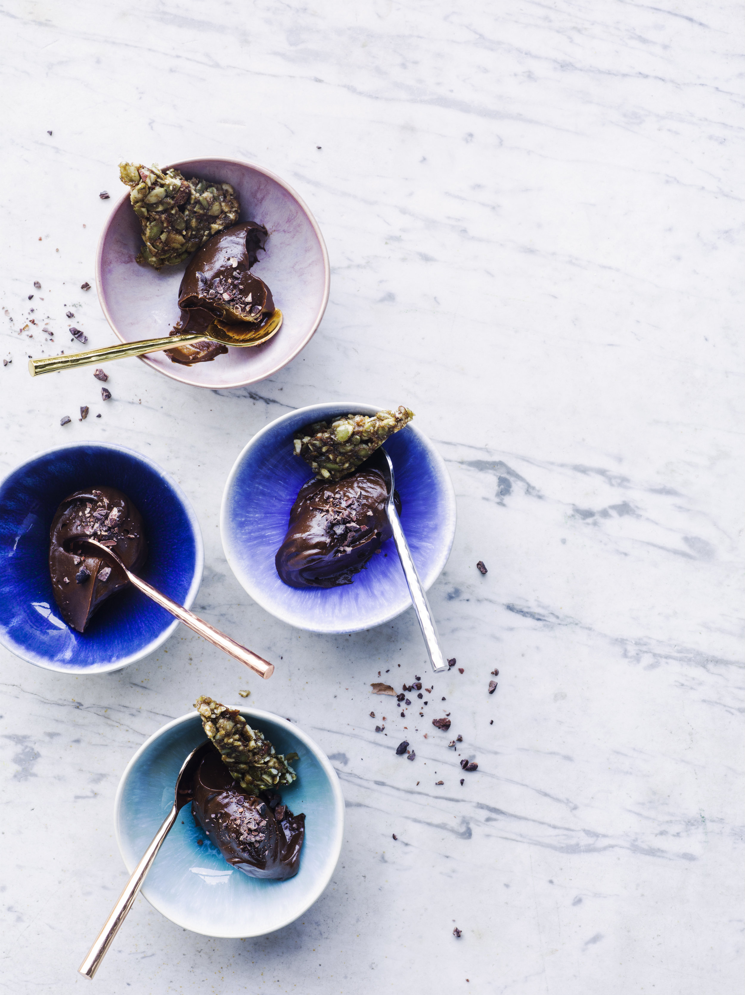 HH Pavillion Raw Food Raw Chocolate Puddings001.jpg
