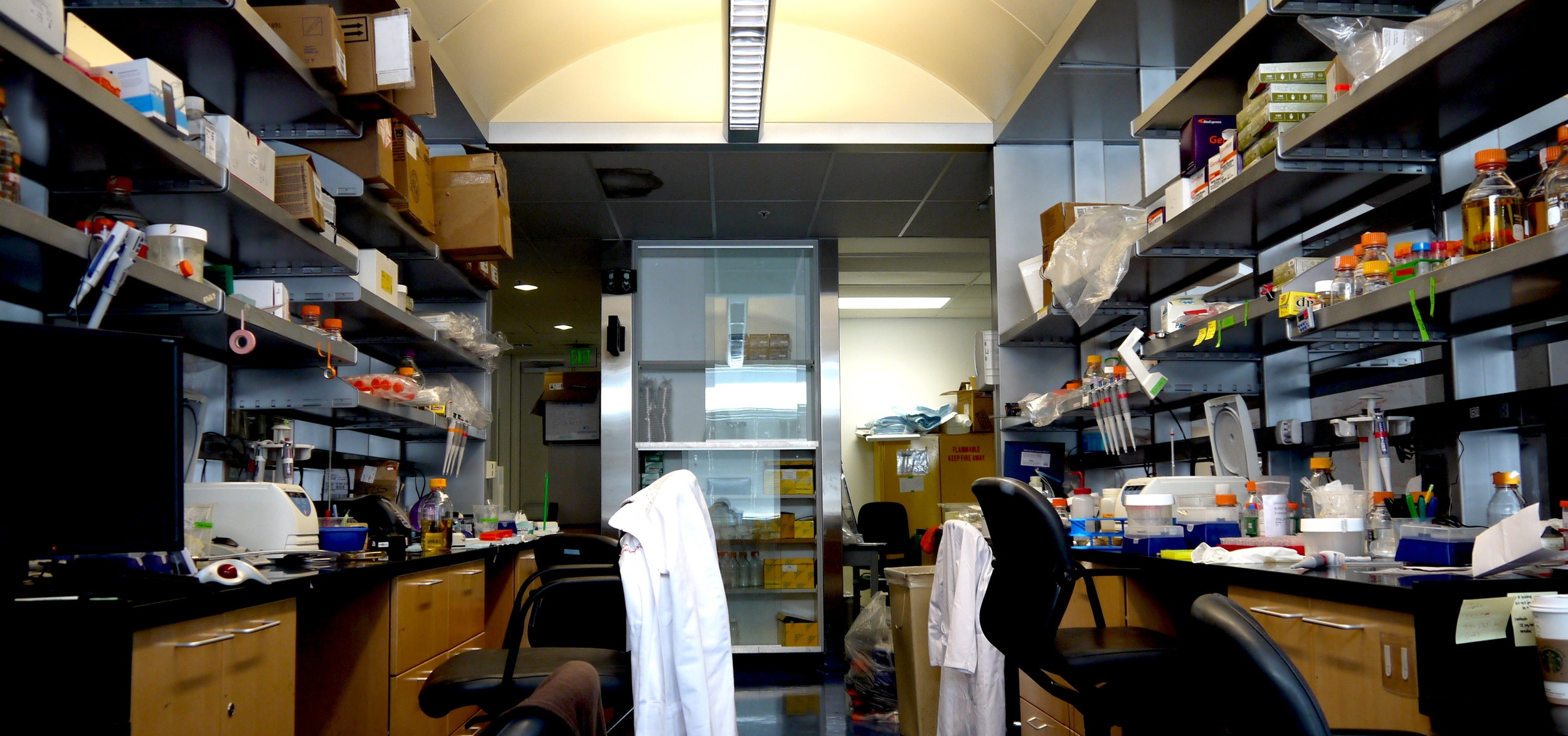 Professor Lin's Laboratory at the Stanford School of Medicine.  Image courtesy of the Lin Lab.
