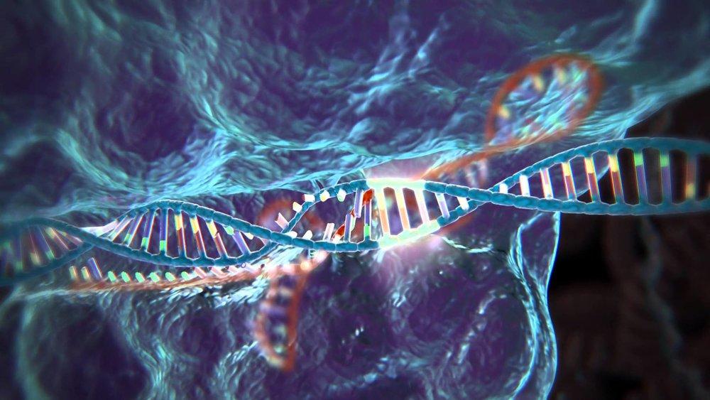 CRISPR Technologies at Stanford   By Peter Dun