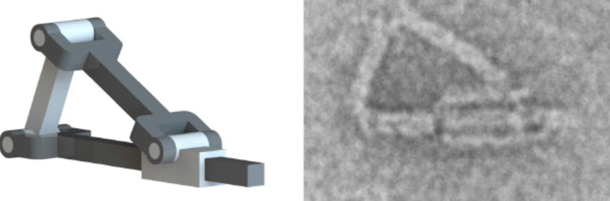 """A machine made with DNA """"origami"""" developed at Ohio State University."""