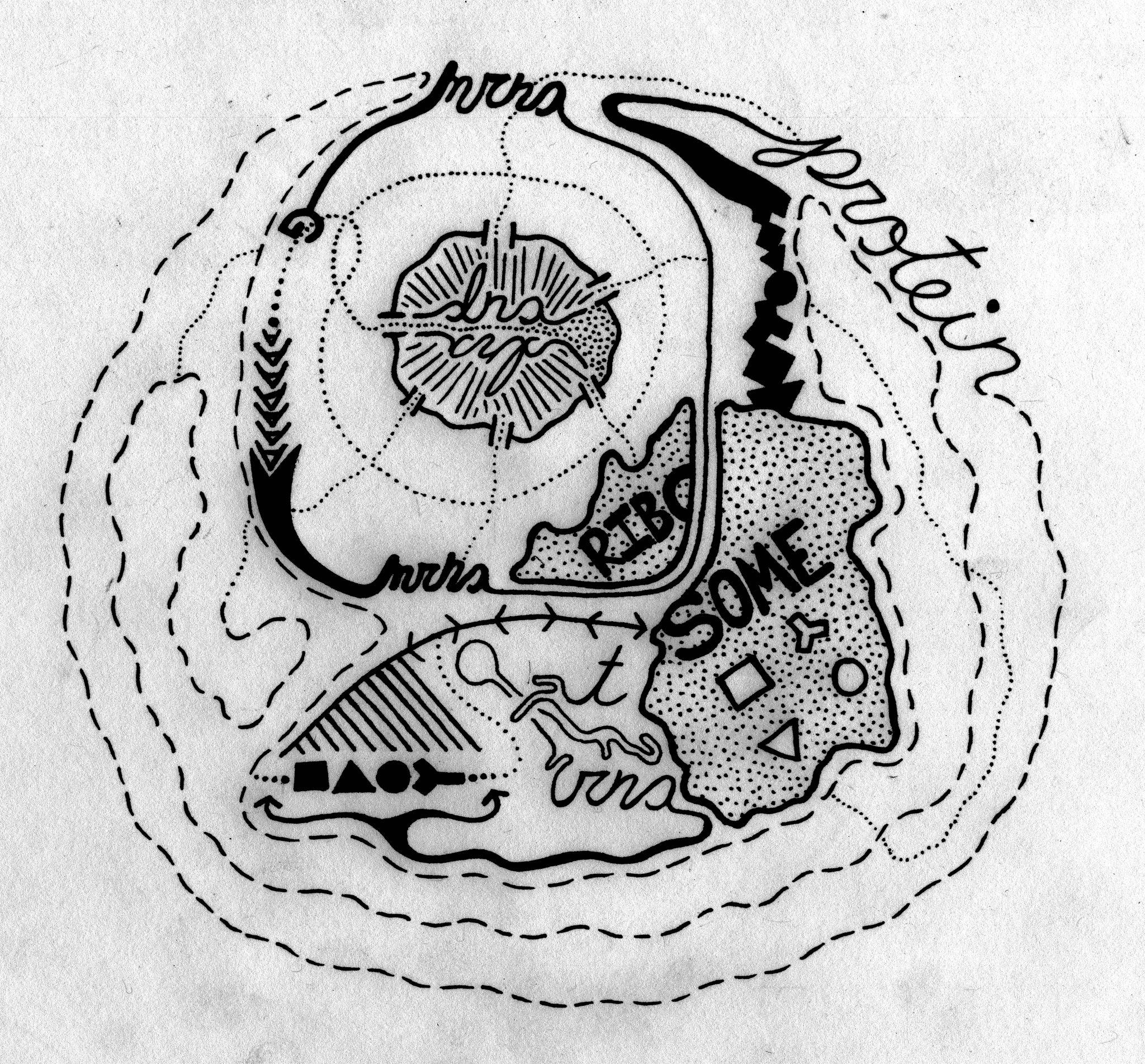 "'De-Central Dogma"" by Daniel Friedman"