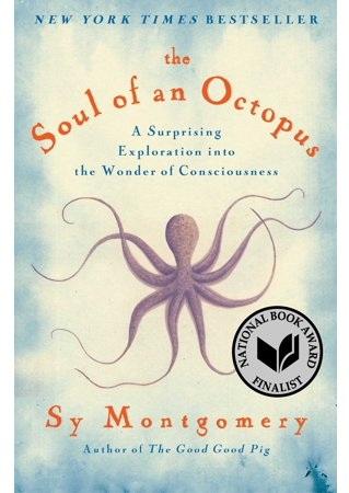 octopurs.jpg