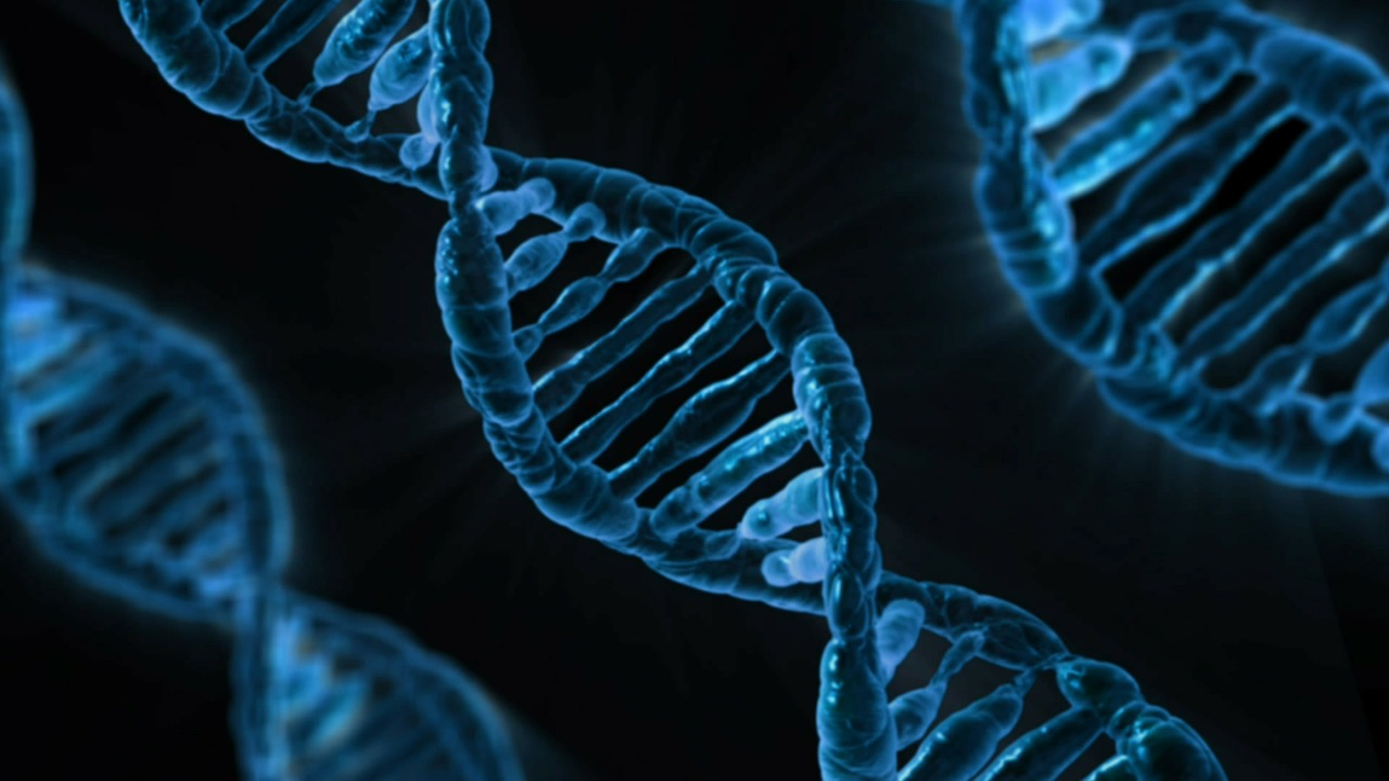 Src: The Discovery of the First Proto-Oncogene    By Eric Liu