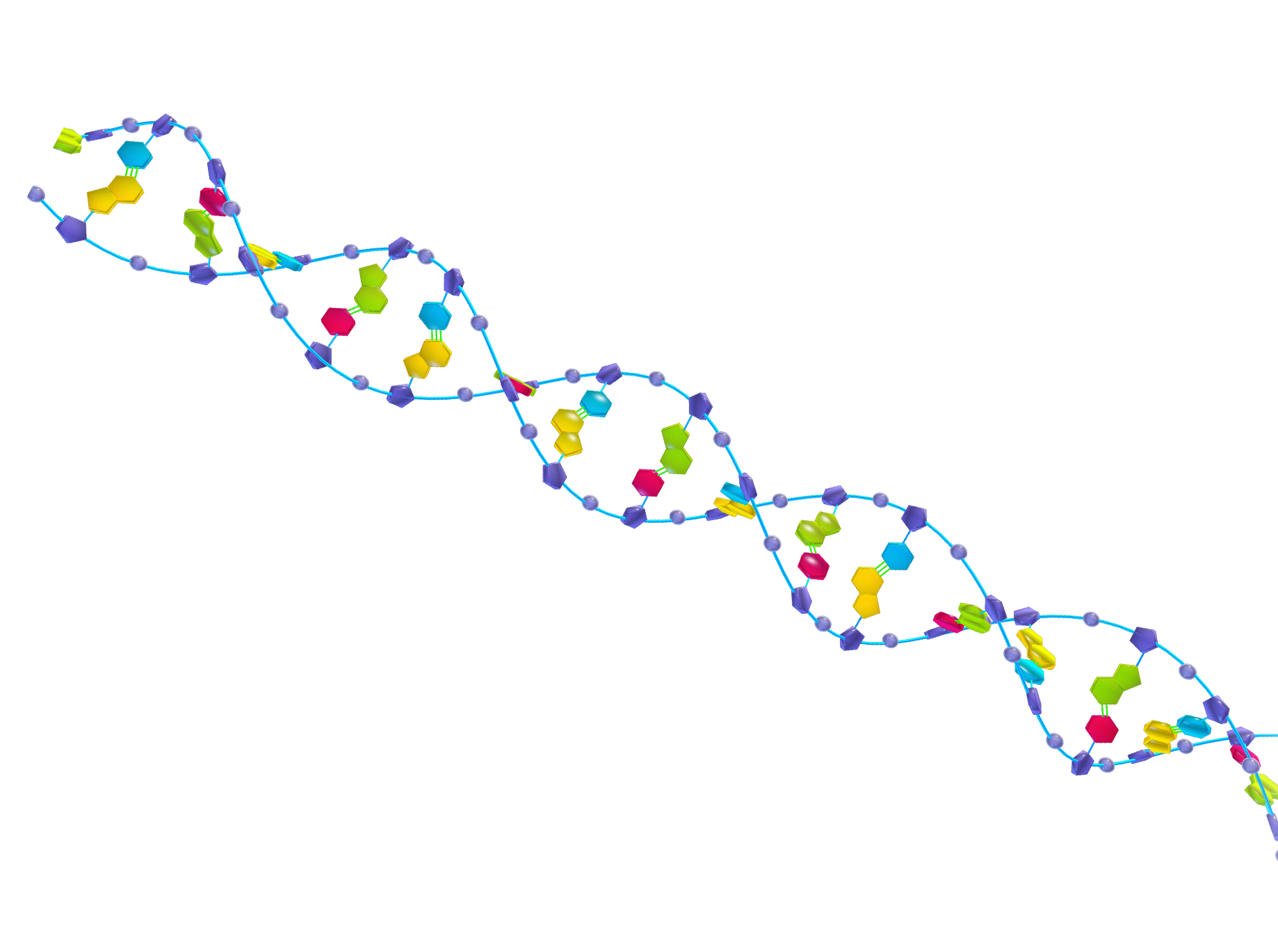 Ethics of Genetic Engineering in the 21st Century    By Francesca Kim