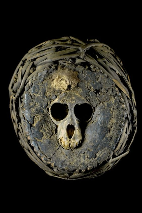 """A  nkisi bumba  fetish. These are made from primate skulls (monkey, gorilla, chimpanzee or lemur).  Nkisi  means magic, and b umba  signifies a ball or box for medicine, or in its verb form it means """"to reap"""". Yombe people, Democratic Republic of Congo."""