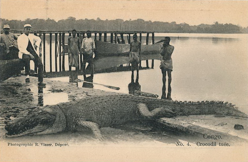 nude croc.jpg