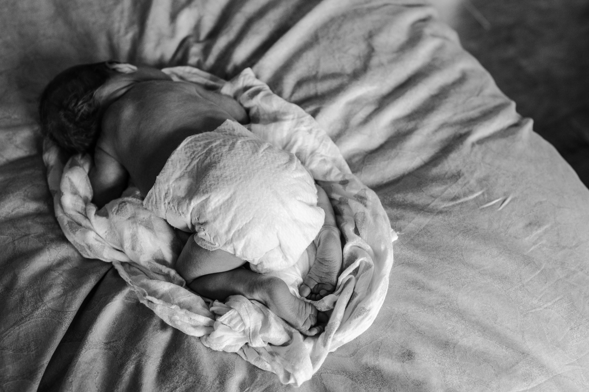 olivia o'young toronto newborn photography