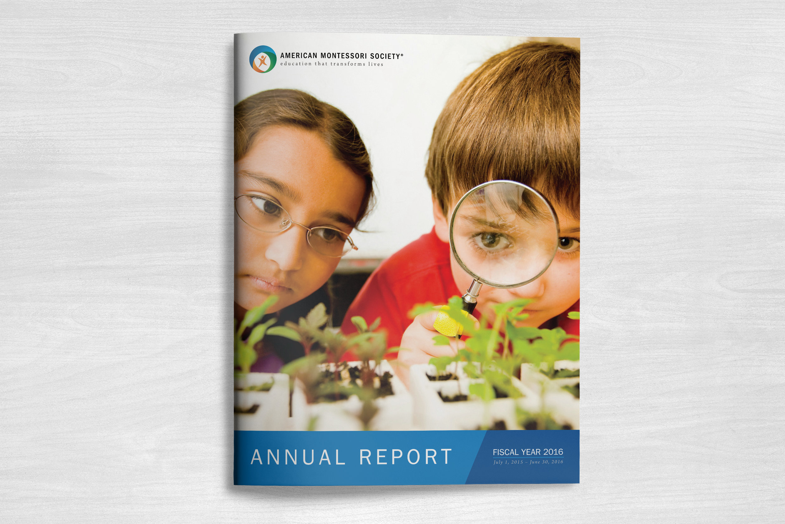 AMS FY 2016 Annual Report Cover