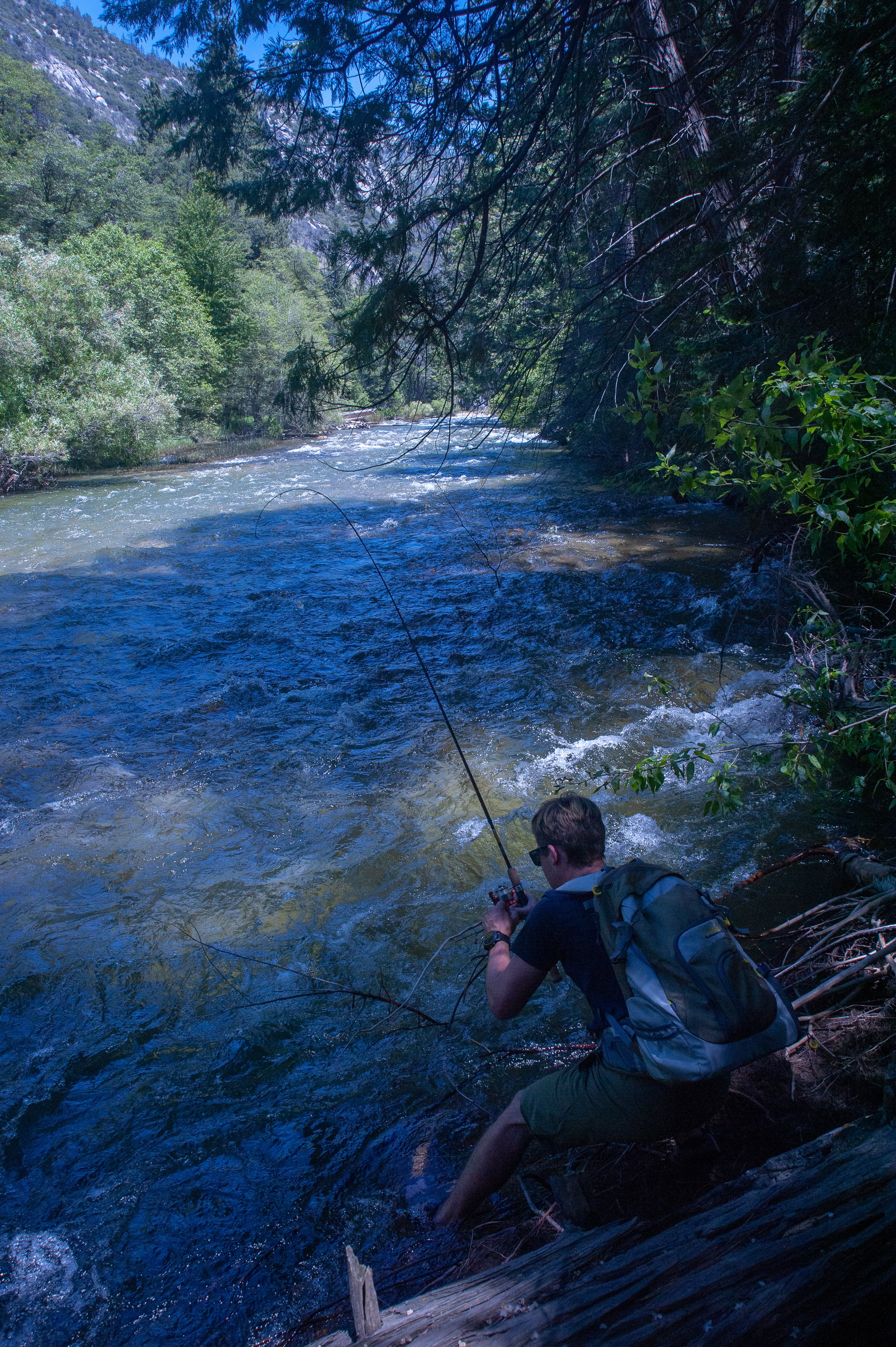 Fishing in the River next to Sheeps Creek