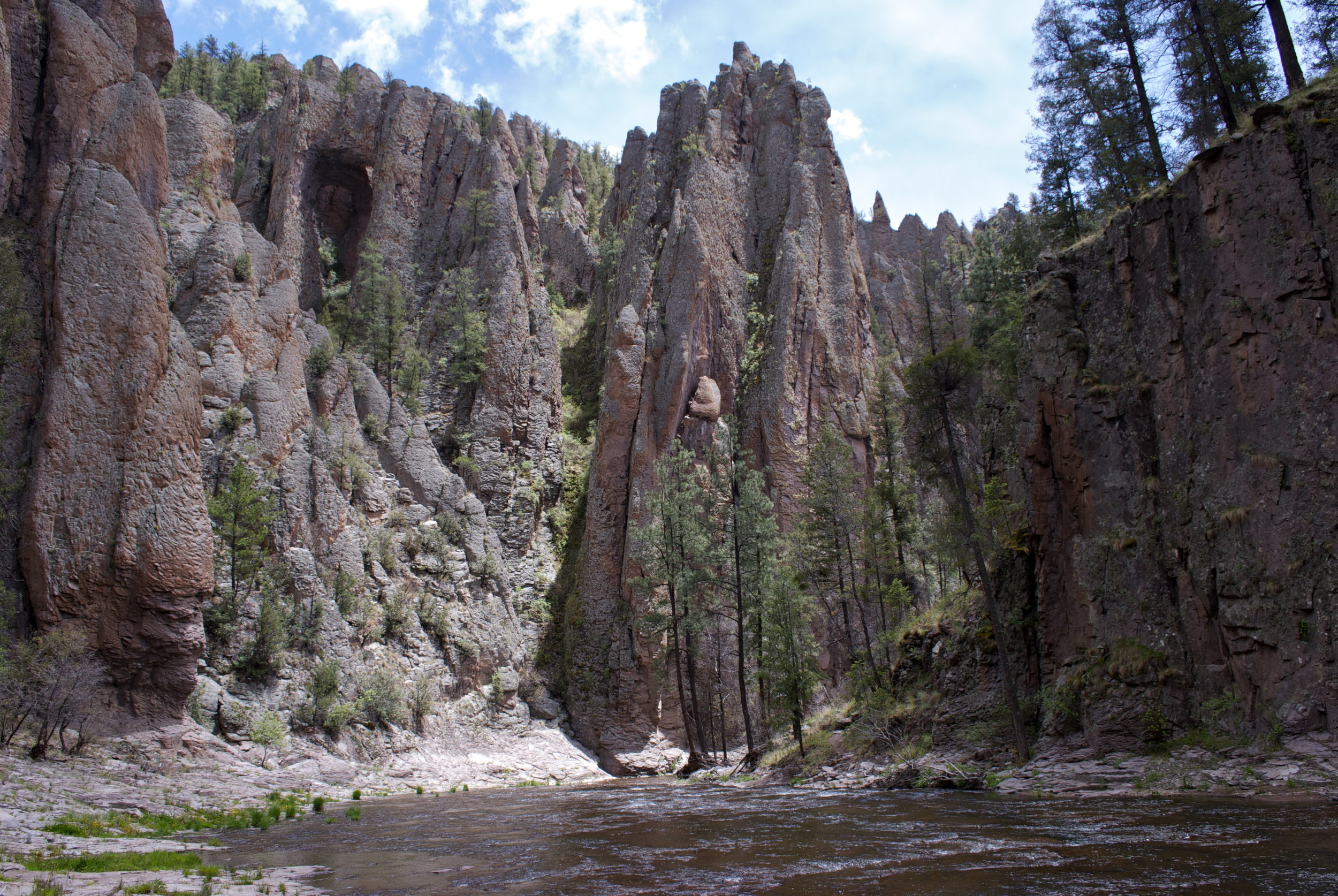 Middle Fork of the Gila River near Swinging Cross Canyon. Photo By Zane White