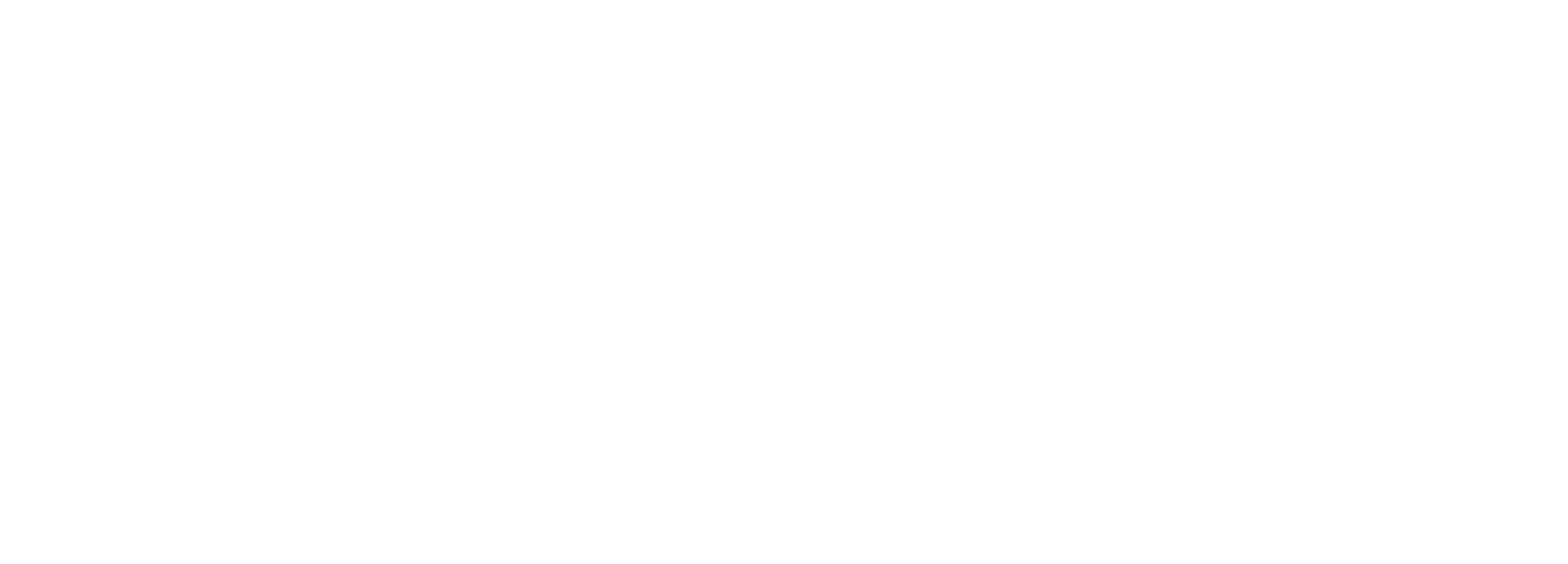 logo-blackside white wide2.png