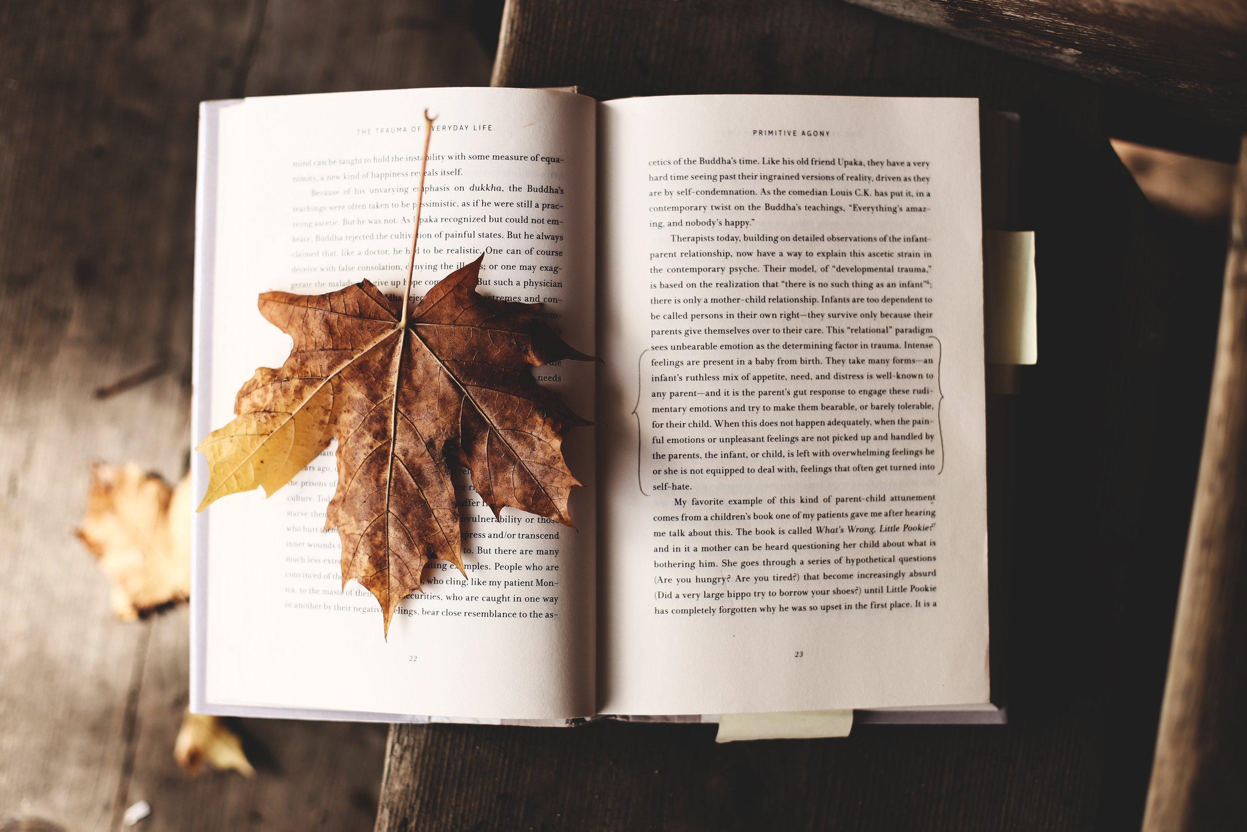 Money Books Autumn