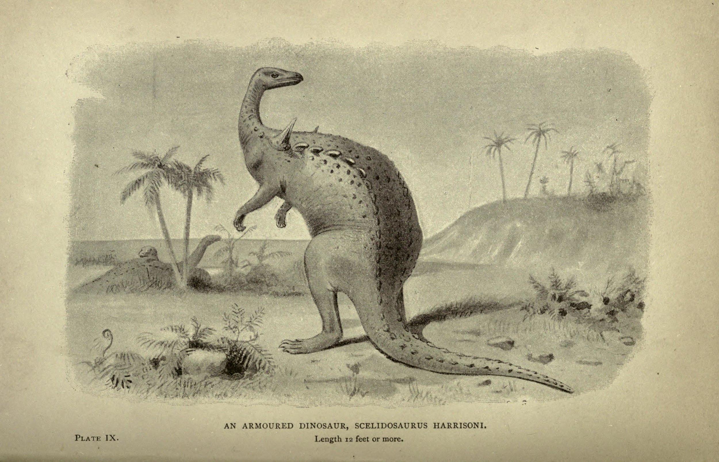 Figure     1    :  Scelidosaurus harrisoni  by Joseph Smit, from  Extinct Monsters  (1892)