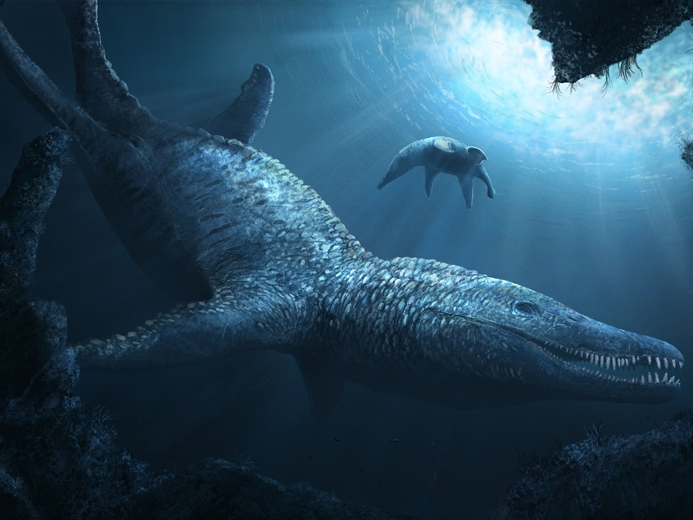 Pliosaurus low res © Witton 2018.jpg