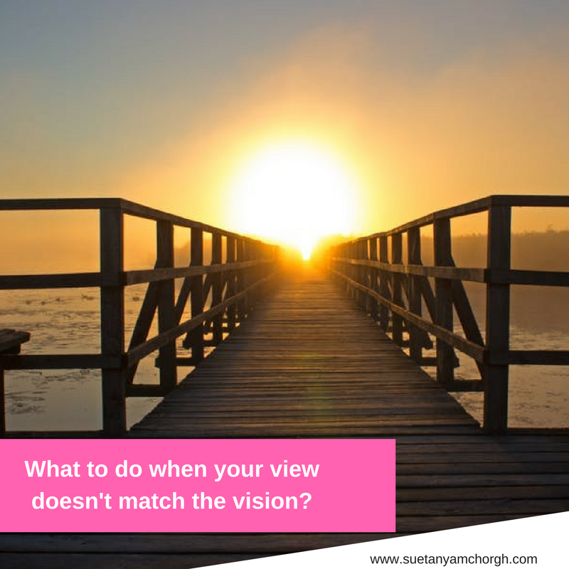 What to do when your view doesn't match the vision_.png