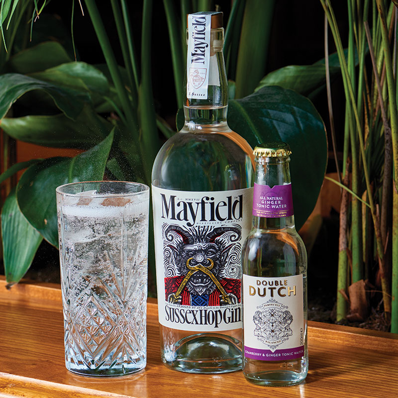 Emporia-brands---innovation-2019---mayfield-sussex-hop-gin-month.jpg