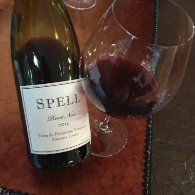 2014-Spell-Estate-Pinot-Noir-Terra-de-Promissio-Vineyard.jpg