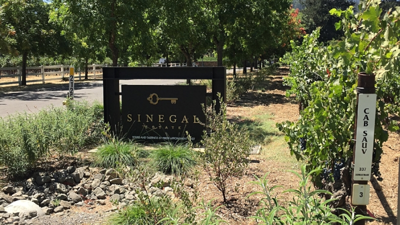 Welcome to Sinegal Estate!