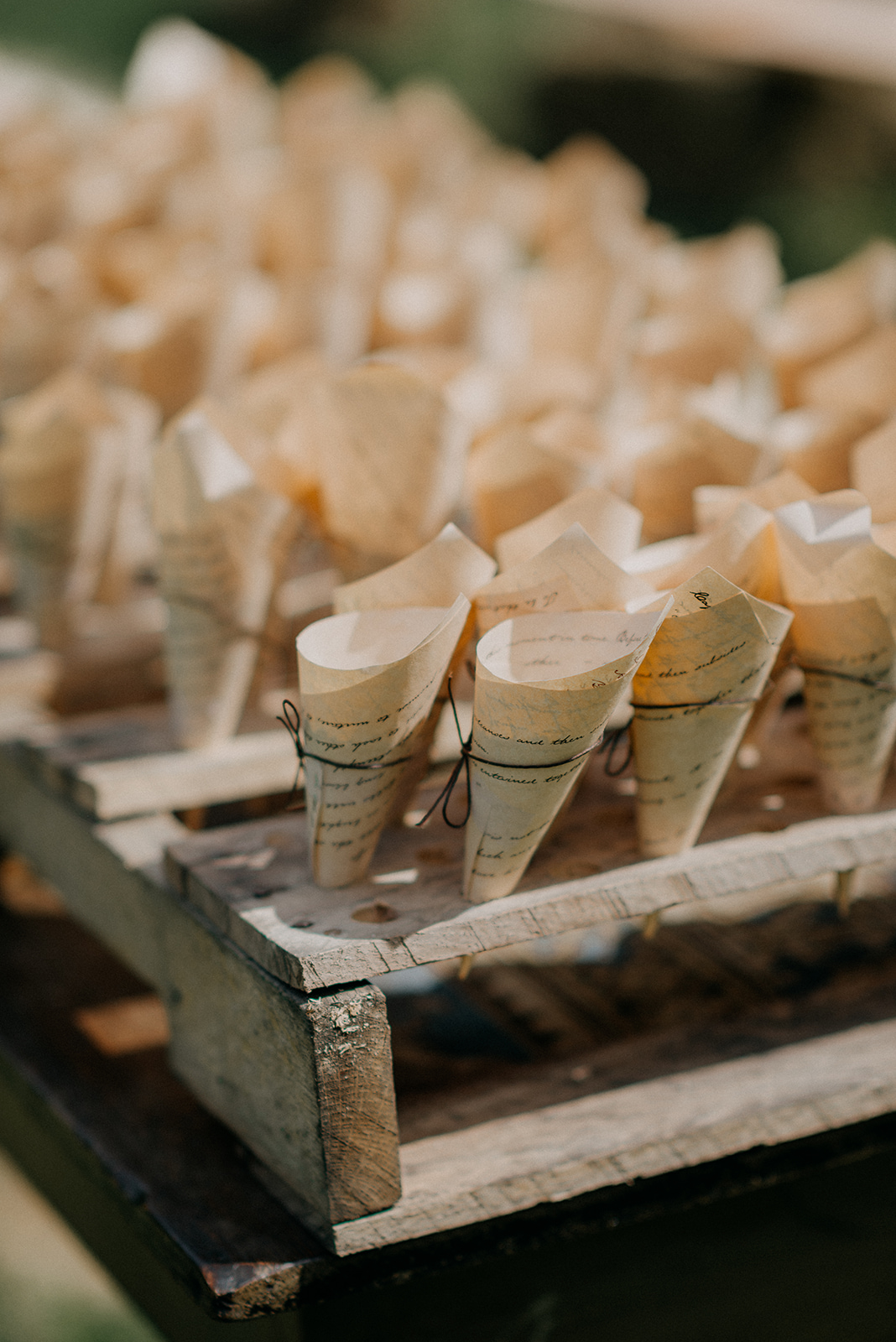 Lavender Wedding confetti for the bride and groom - Pearl Weddings & Events
