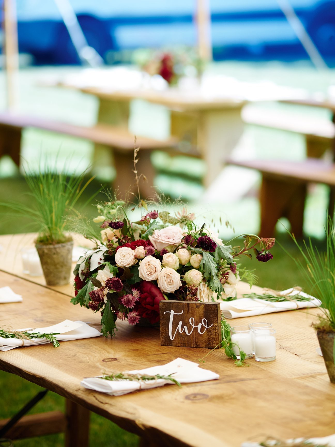 Farm tables and benches with wooden table numbers and centerpieces with plants - Pearl Weddings & Events