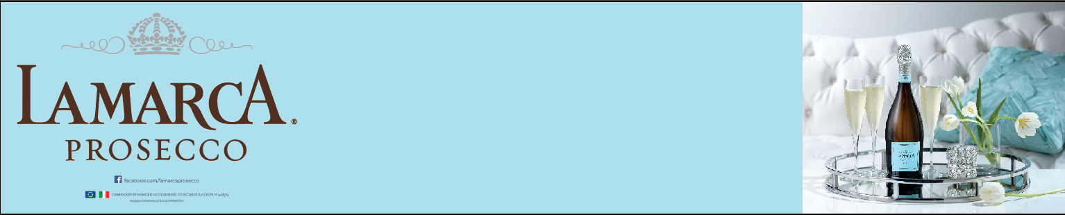 4x20 Custom Banner Form