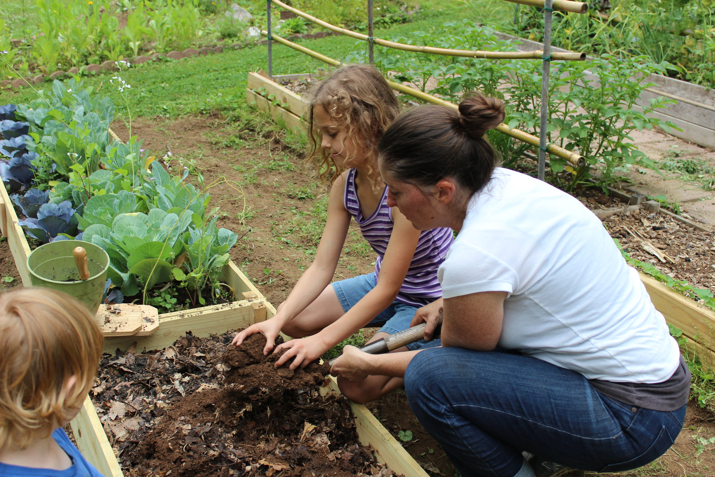 The purpose of the GROW gardens is to share knowledge and increase gardening skills within our community.