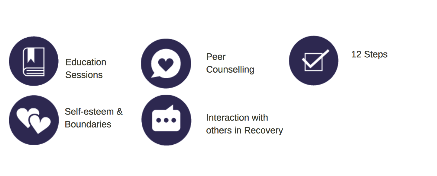 graphic of recovery support program model