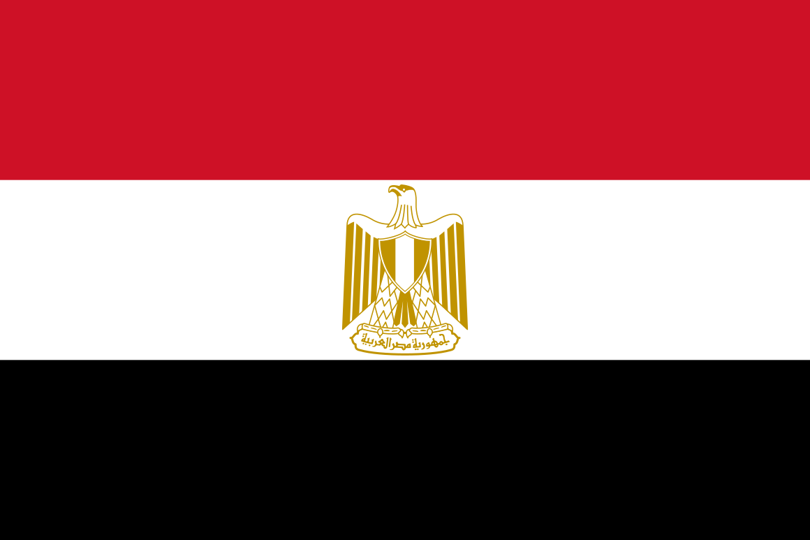 Egypt   Dr. Williams advised Egyptian civil society, members of Parliament, political parties, and the Constituent Assembly following the revolution.