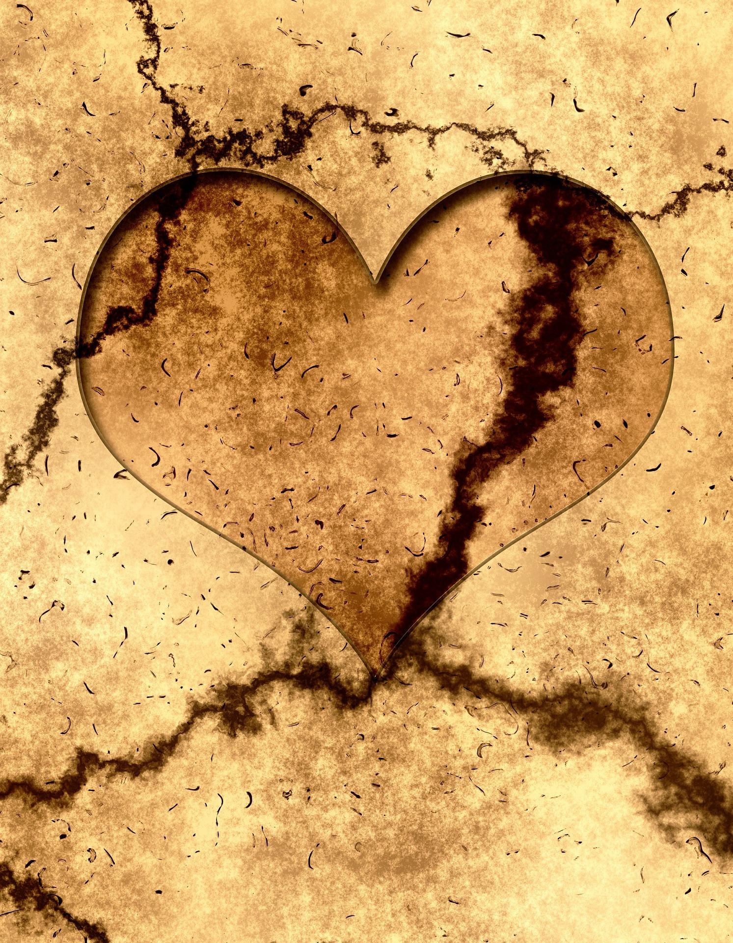 heart-401499_1920.jpg