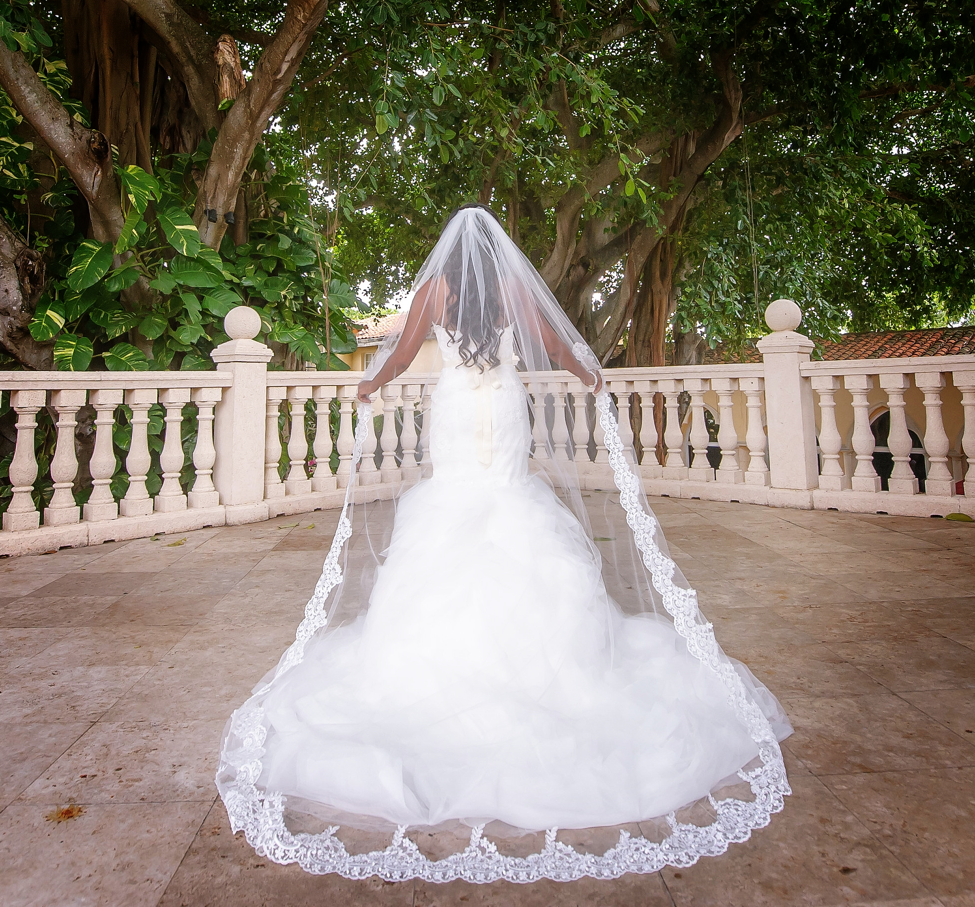 Gorgeous Lace Veil, Partially Laced to Waist