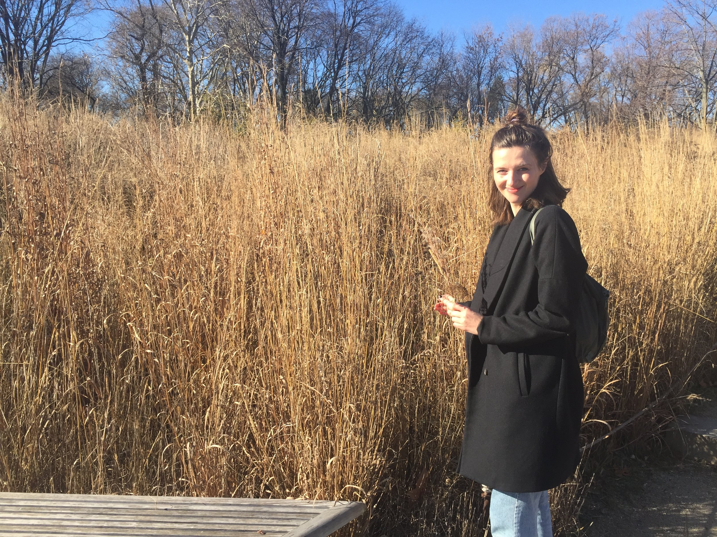 Sara Boccaccini Meadows | Freelance Wisdom