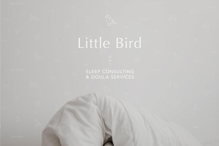 Elyse Stevenson | Little Bird | Creative Lady Directory