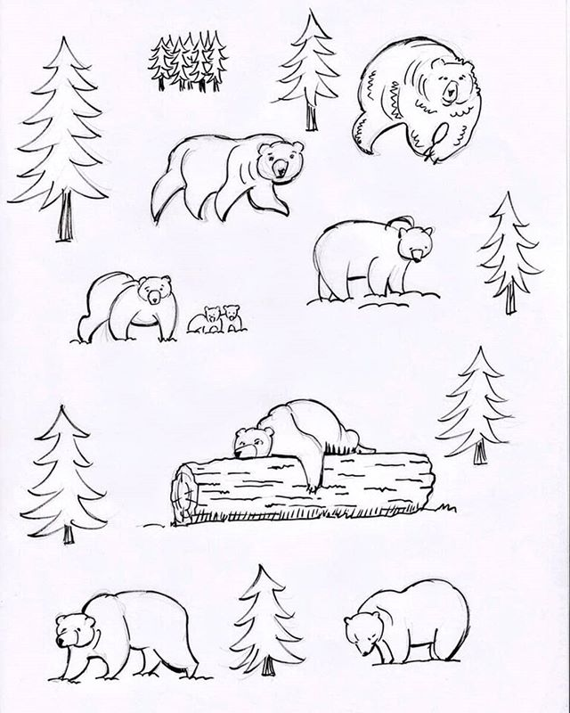 A page of bears and trees. Doodling while listening to Coral spin some great tunes on ckwr 98.5 fm #kitchener #kwawesome #doodle #doodlesofinstagram #bears #inspiredbynature #bearsarepeopletoo #dontbodderdabears #nature #naturelover #coralfm #coralandrews