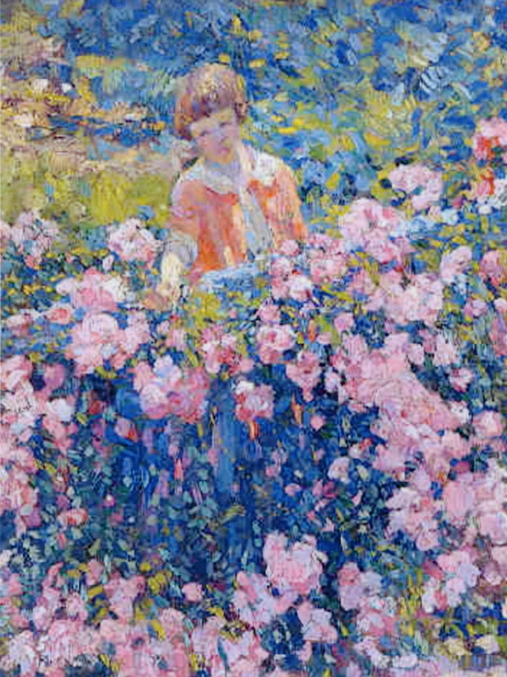 Dorothy: Rose garden