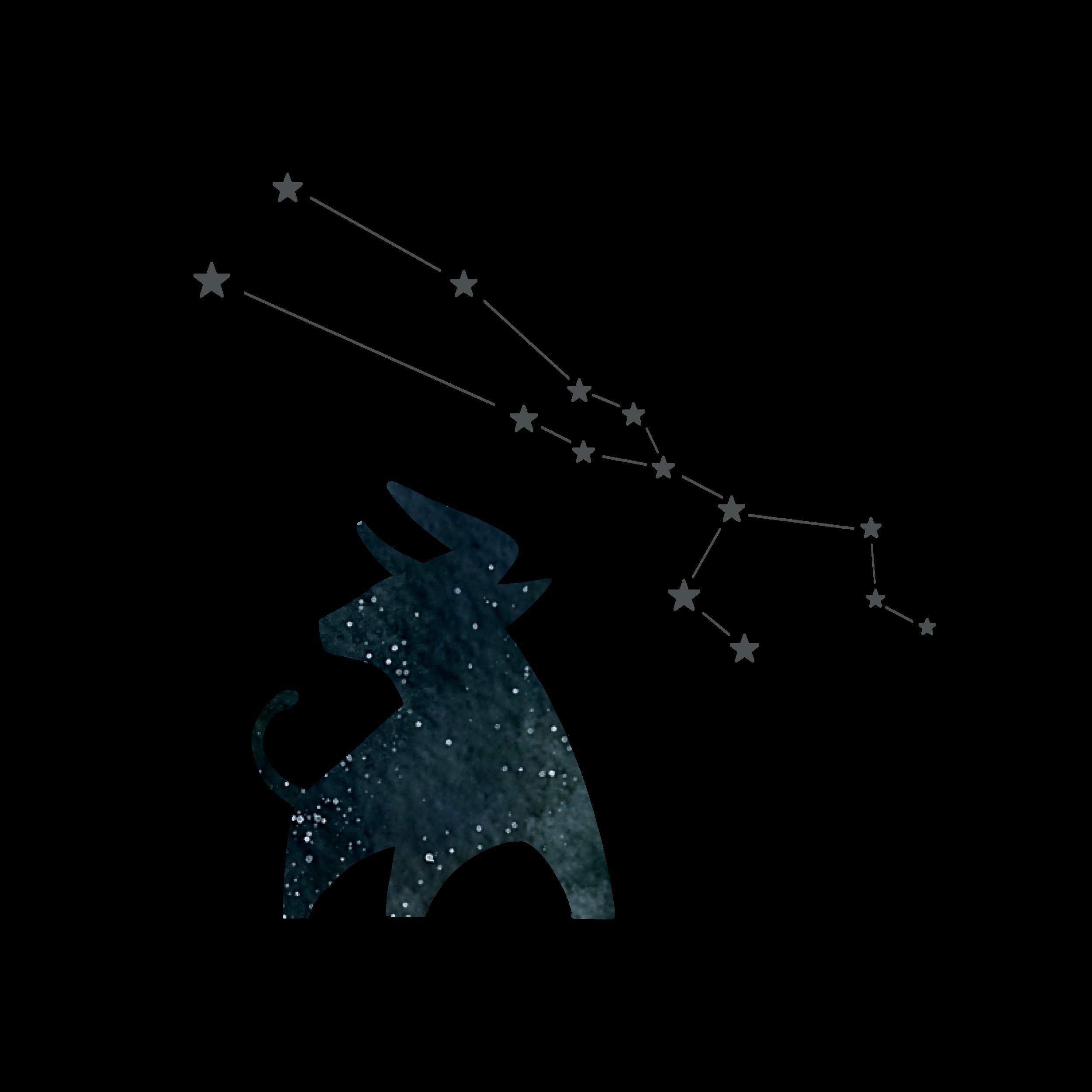 DCD_Blog_Astrology_Taurus.png