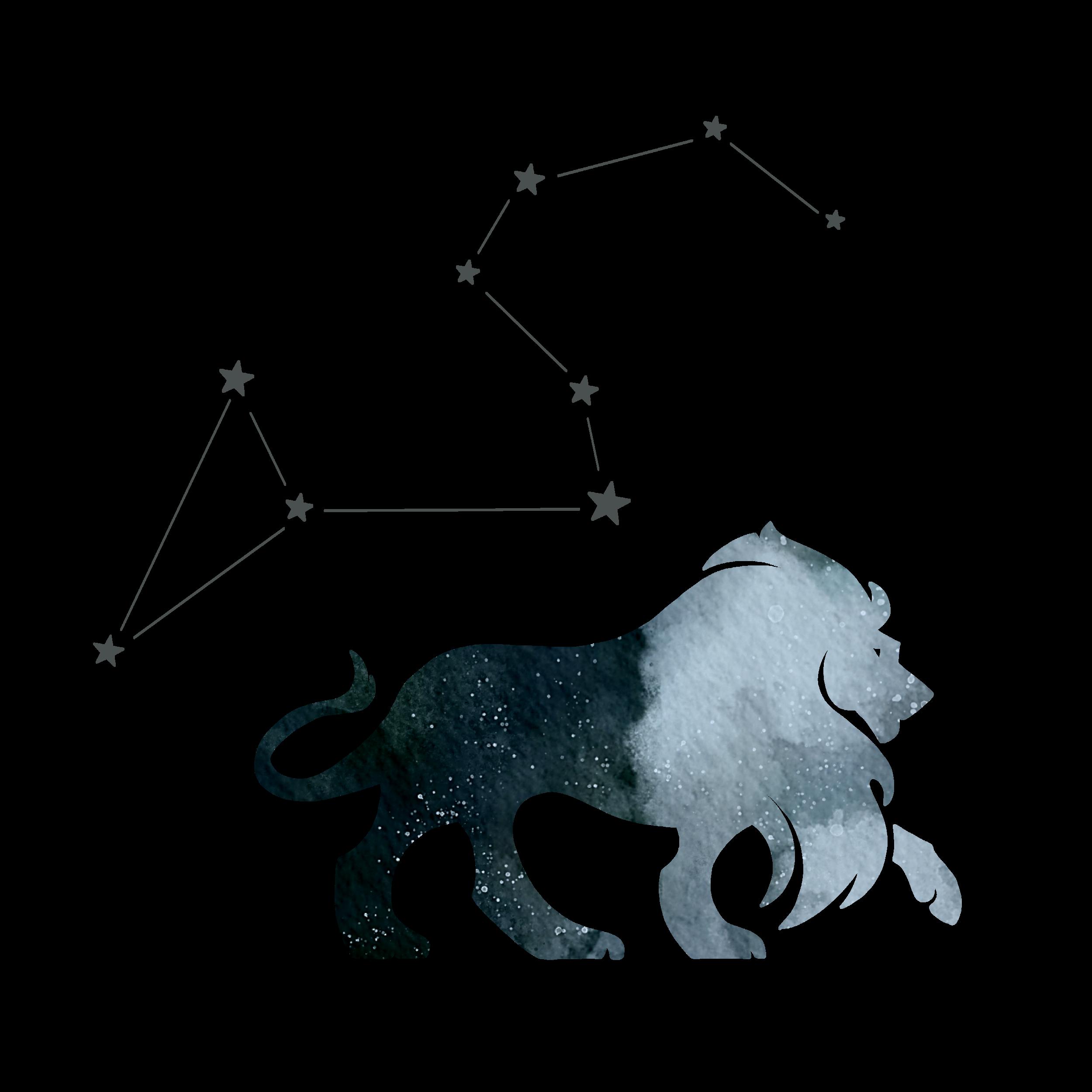 DCD_Blog_Astrology_Leo.png
