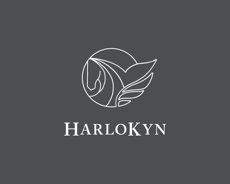 DCD_Portfolio_HarloKynLLC-01.jpg