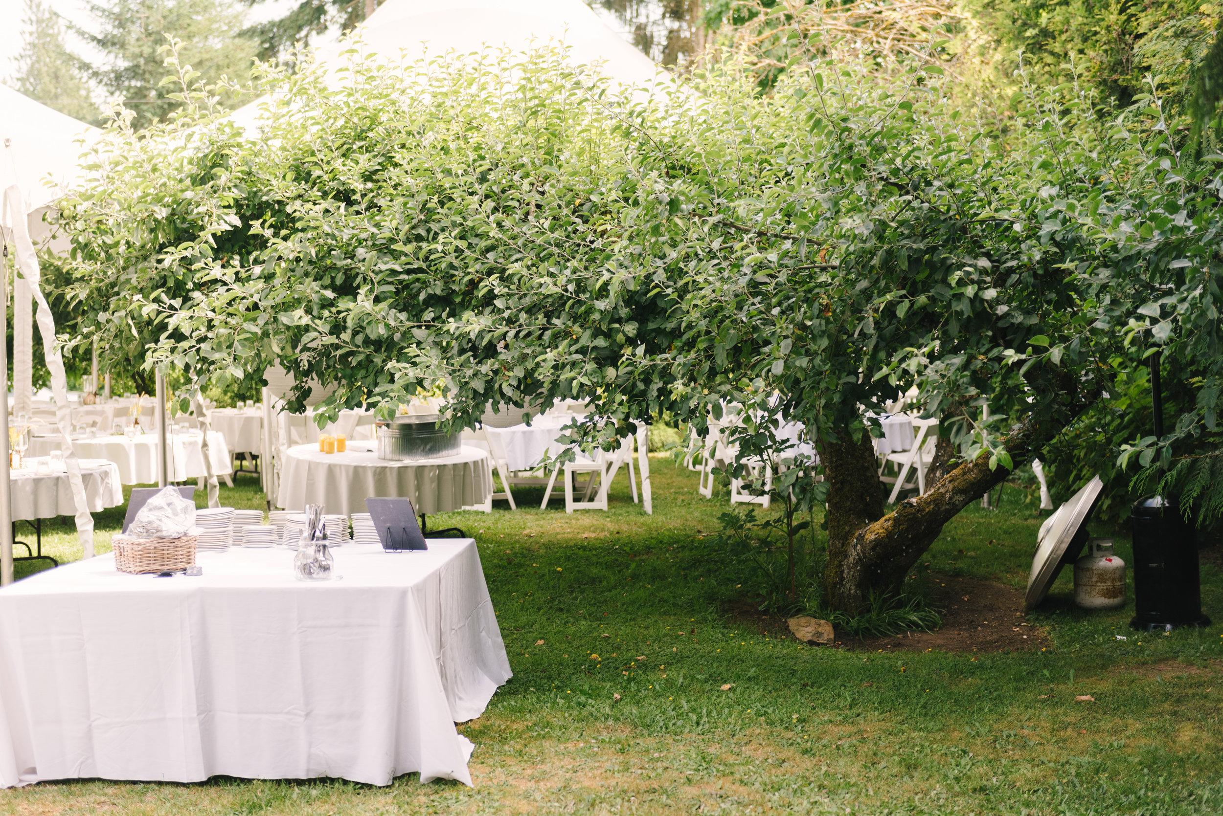 maggie+jordan-wedding-0231.jpg