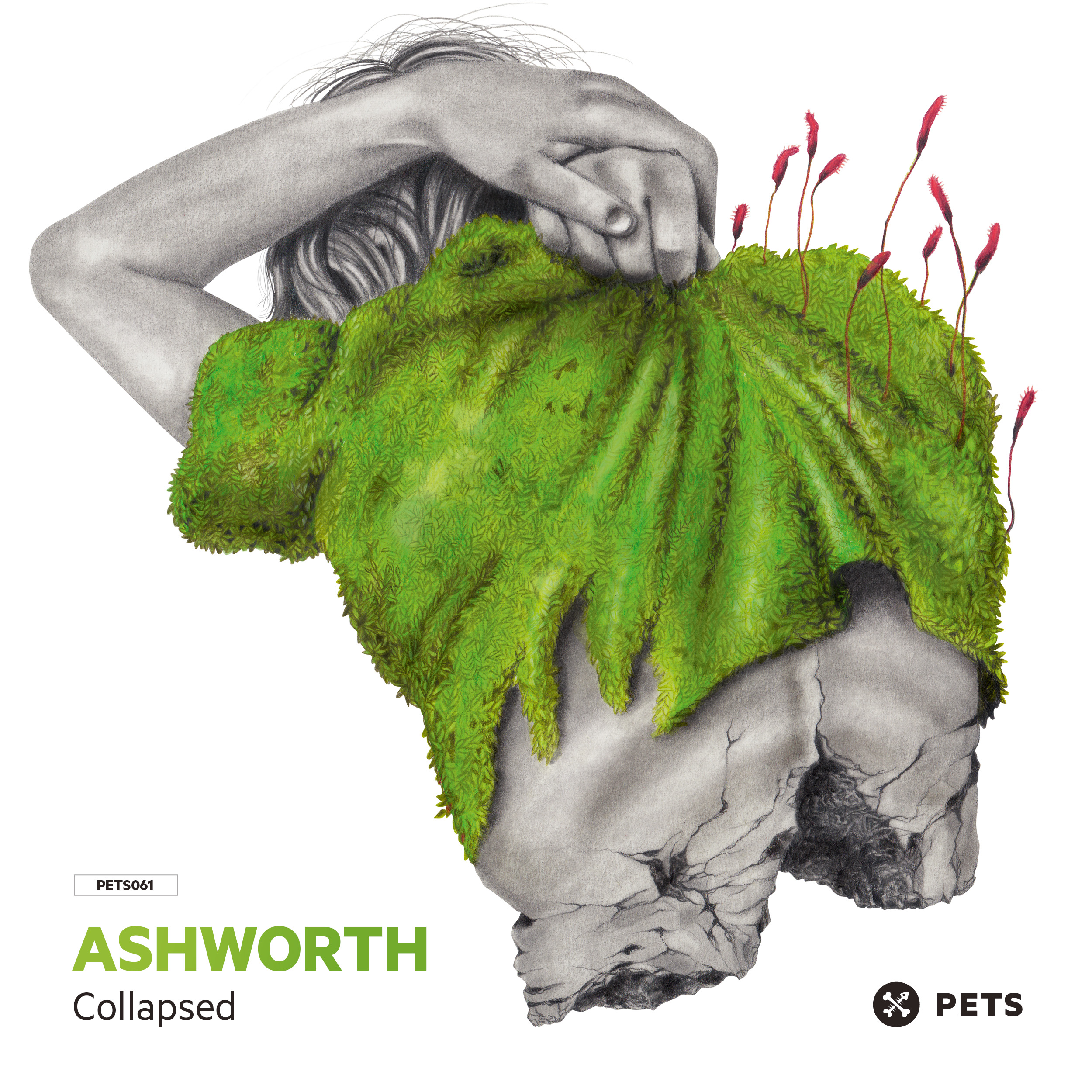 Ashworth - Collapsed EP [PETS061]