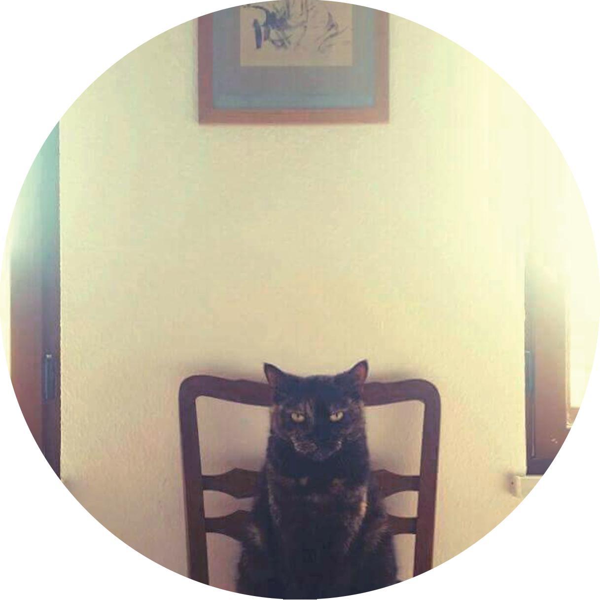 Reno Wurzbacher - Memories EP [STEP012]