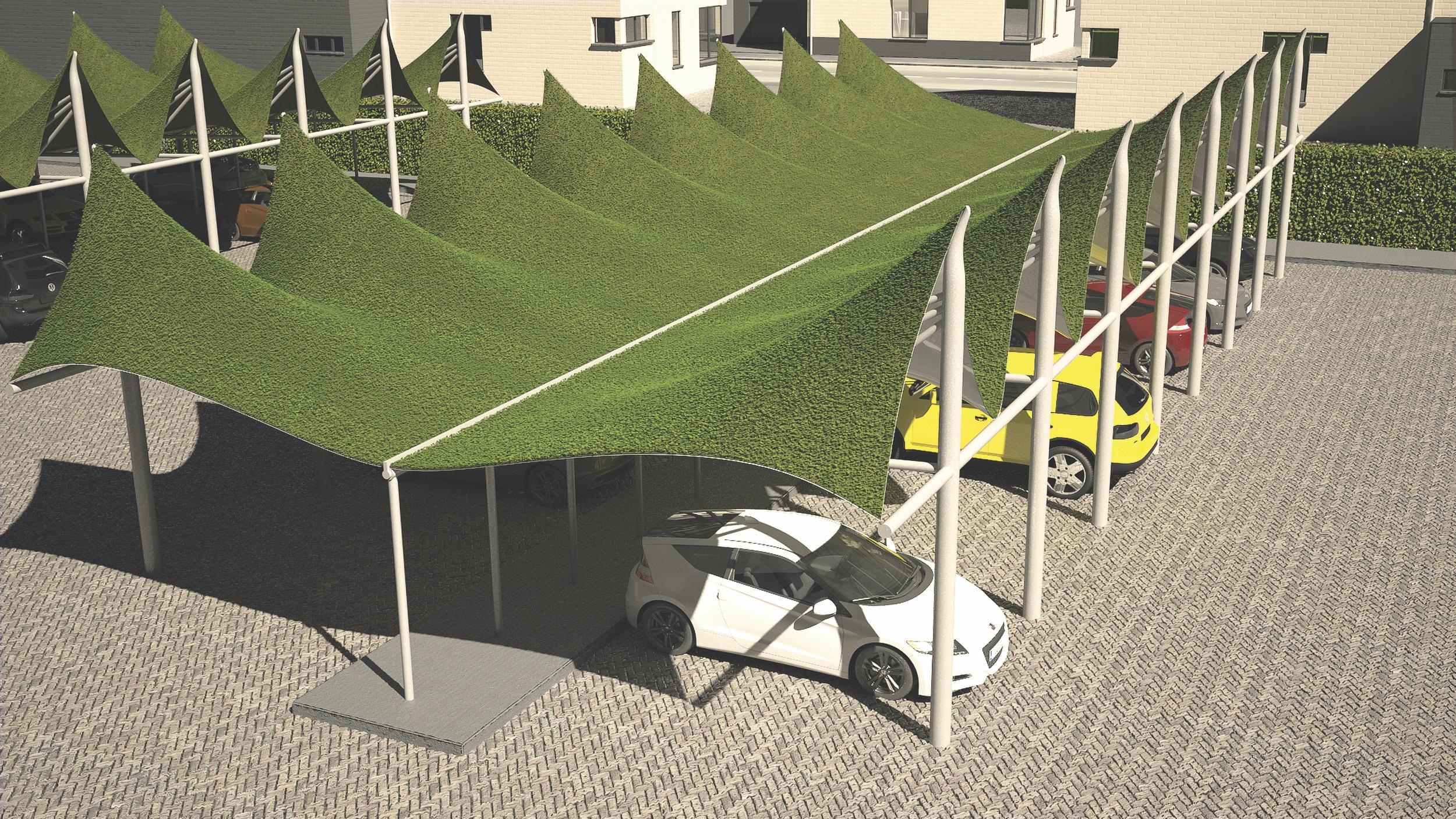 09-parking_veg.jpg