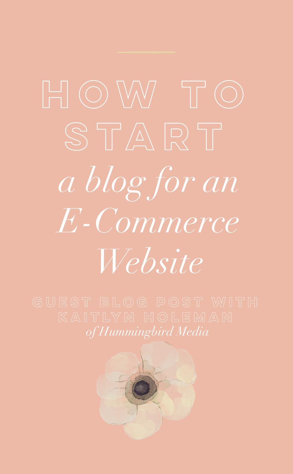 Today's post is a guest blog post written by  Kaitlyn Holeman of Hummingbird Media .