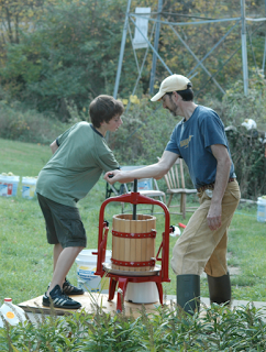 Apples being pressed into cider by boy and father