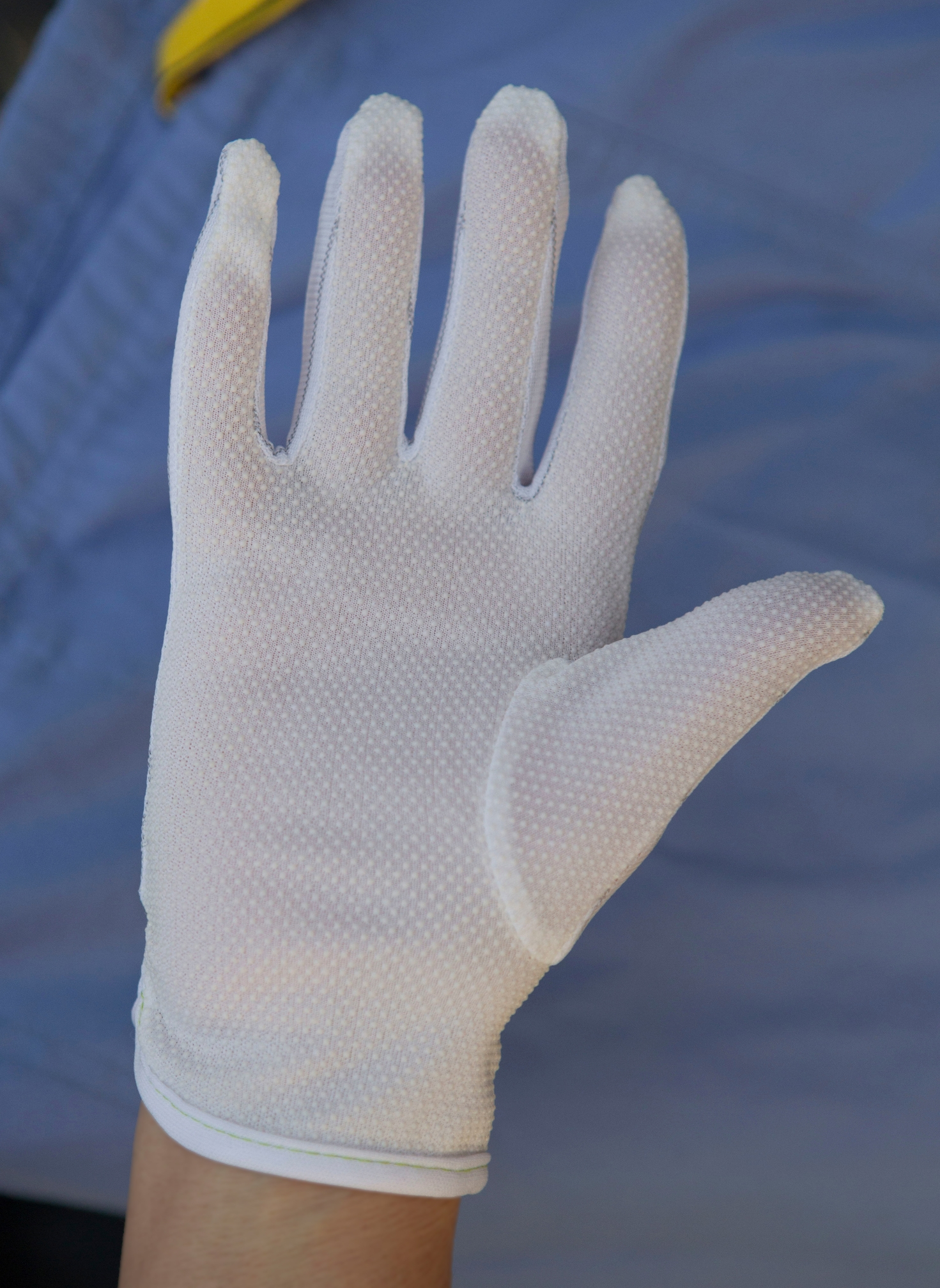 Lab gloves: lint-free, static-free (palm view)