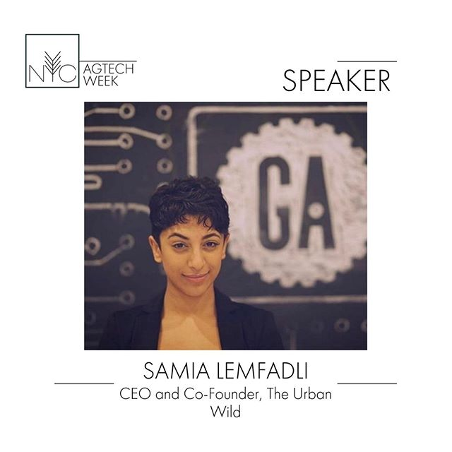 Samia Lemfadli is a technologist, workforce development professional and CEO & Co-Founder of The Urban Wild. @changefoodforgood  Which provides educational and workforce development programs for agricultural technology for underserved communities. Samia will be speaking on the Show Me The (non-VC) Money: Alternative Capital Sources for Urban Agriculture on 9/23, #nycagtechweek2019